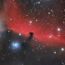 IC434 - Horsehead Nebula,                                Adam Cseh
