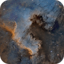 NGC 7000 & LDN 935 - First Light for OS RH 200,                                Paddy Gilliland