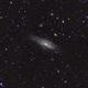 NGC 7331 - Deerlick Group,                                Doug MacDonald