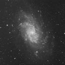 Sugar Sprinkle Galaxy,                                Roland Christen