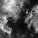 NGC 7000 - Starless,                                John Gleason