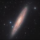NGC 253, the Sculptor Galaxy (HaLRGB),                                Ruben Barbosa