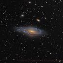 NGC7331 Galaxy,                                Sascha Schueller