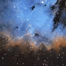 Pacman Nebula - Close Crop,                                James E.