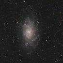 M33,                                ceteris_paribus