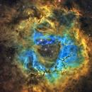 NGC2244 Rosettennebel,                                Andreas Zirke
