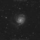 M101 The Pinwheel Galaxy,                                Salvatore Cozza