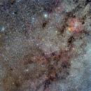 Cepheus: Stars, Nebulae and Dust,                                Paolo Demaria