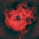 Red Rosette NGC 2244,                                  Scott M. Stirling
