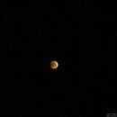 Super Bloody Wolf Moon - A Wide View,                                  Jason Guenzel