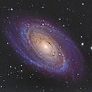 Messier 81 - Bode's Galaxy,                                David Augros