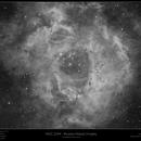 NGC 2244 Rosette Nebula H-alpha,                                Frank Schmitz