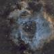Rosette Nebula,                                Neil Johnston