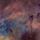 IC 1396 Bok globules,                                Gary Lopez