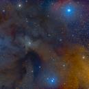 Antares:Rho Ophiuchus Region,                                Mirko M