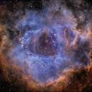 Backyard Rosette in Hubble Palette,                                Kevin Morefield