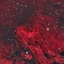 Pelican Nebula With Triad Filter,                                nicholas disabatino