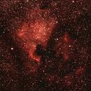 North America and Pelican Nebulae,                                Pafnutiy