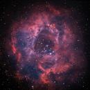 NGC2244 Rosette bicolor,                                tomekfsx