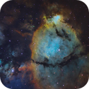 IC1795 SHO,                                Christopher Gomez