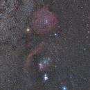 Orion,                                Nurinniska