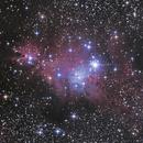 NGC2264 and Cone / Fox Fur / Christmas Tree Nebulae,                                seigell