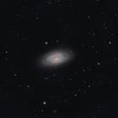 M64  (Black Eye Galaxy),                                Giorgio Ferrari