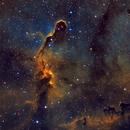IC1396 - Elephant's Trunk Nebula SHO,                                Greg Polanski
