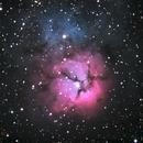 M20 - Trifid Nebula,                                Ray Ellersick