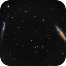 Whale and Crowbar- NGC 4631 and 4656-7,                                Warren A. Keller