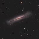 NGC 3628,                                Kyle Pickett