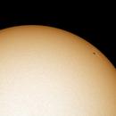 Sunspot White Light Filter,                                ROBERT FELMLY JR