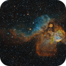 Celestial Fish (NGC 2467),                                Rodney Watters