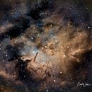 NGC 6820 & NGC 6823,                                Carl Weber