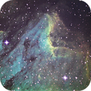 Pelican Nebula Narrowband,                                Kyle Williams