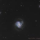 M61 - Spiral Galaxy in Virgo,                                Hap Griffin