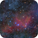 The Heart Of Orion (LDN1634),                                LAUBING