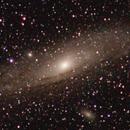 The Great Andromeda,                                radix655