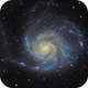 Pinwheel Galaxy - M101,                                Thomas Richter