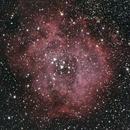 A Classic Christmas Rosette,                                astrobrad