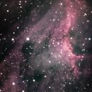 Pelican Nebula (IC5067〜5070),                                Ken Yoshimura