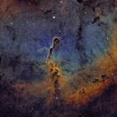 IC1396 - Narrowband Elephant's Trunk,                                Rick Stevenson