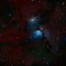 Messier 78 - A Nebula in Orion - RGB & Ha,                                Daniel.P
