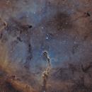 IC 1396 HaSHO,                                Xaxas