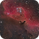 Cederblad 51 in Orion - HaRGB,                                Jarrett Trezzo