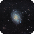 NGC 300—The Prototypical Spiral Galaxy,                                Russ Carpenter