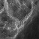 Eridanus Loop,                                John Gleason