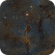 IC-1396, The Elephant Trunk Nebula,                                riot1013