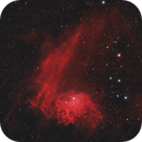 IC405 and IC410 - The Tadpoles and Flaming Star Nebula,                                Florian @ ClearSkyMarket
