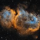 Soul Nebula / IC 1848 / SH 2-199,                                Charles Raphiel